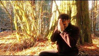 Calming Breath Meditation - Parasympathetic system