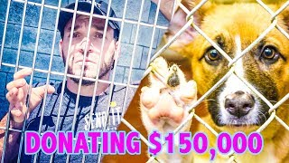 Locked In A Cage 24/7! Live-stream For Charity
