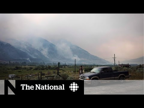 Wildfire smoke creates air quality concerns in B.C.