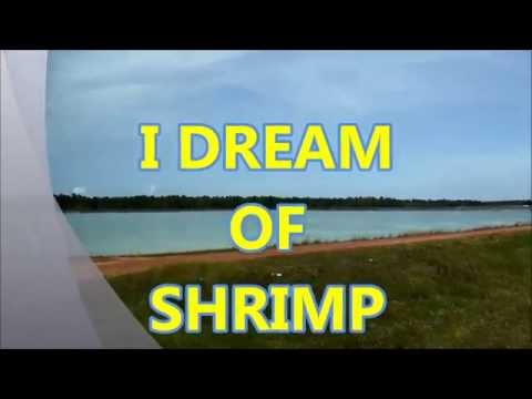 I Dream of Shrimp - The CALIDENA Diagnostic Workshop in Belize