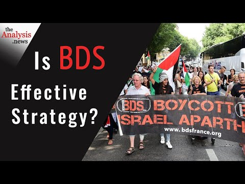 Is BDS Effective Strategy? - Shir Hever Pt 3/3