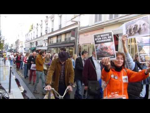 Manifestation Laissons Leur Peau Aux Animaux Paris 2015