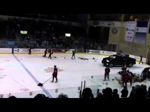 4th Annual Wenatchee Wild Teddy Bear Toss! 12/3/11