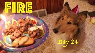 Maysie's Birthday Party &... a Blizzard! | 28 Day Fire Challenge | A Fire Everyday