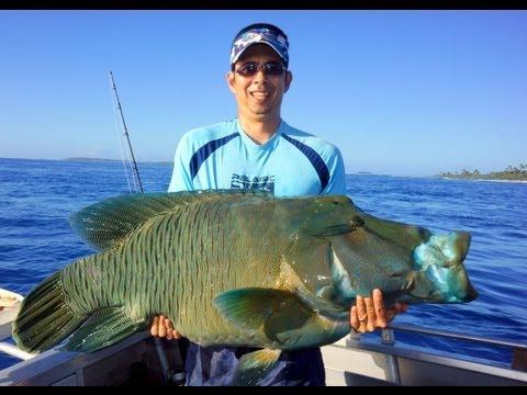 Awesome Fishing in Beautiful Aitutaki, Cook Islands