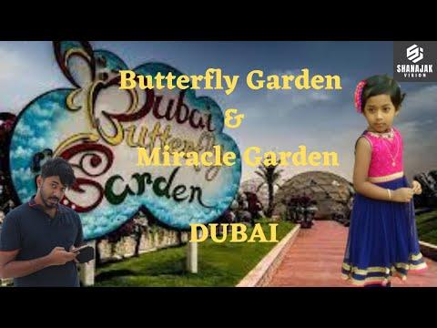 Dubai Butterfly Garden + Miracle Garden || SHANAJAK VISION || Speekzzz