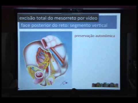 Bases Anatômicas e Técnicas para ETM - Sergio Eduardo Alonso Araújo