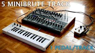 Minibrute 2S - 5 tracks - 1 pedal/track - still kinda all sounds come from the Miniburte