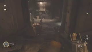 Play some Call of Duty: WW2 Zombies!