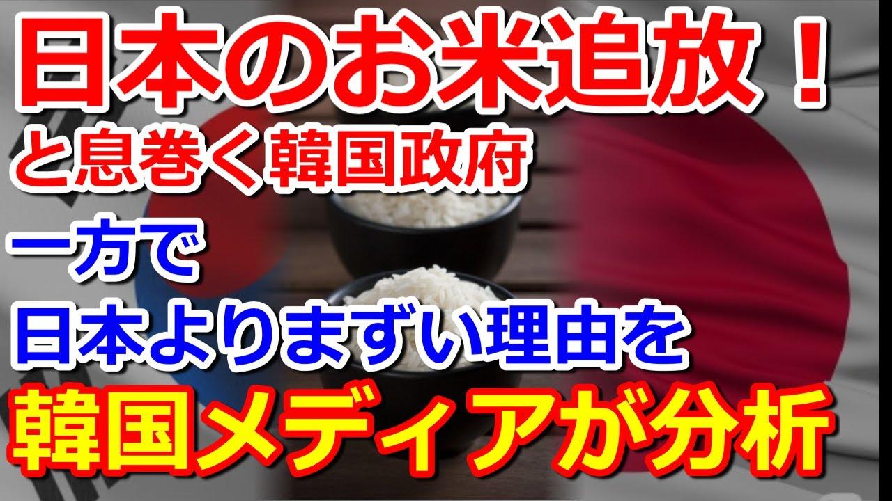 韓国政府日本のお米を追放!韓国の白ご飯が日本よりまずいのに?