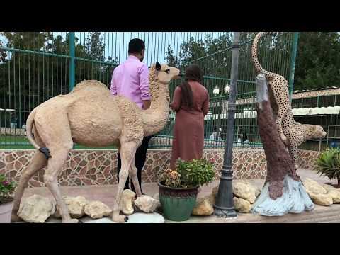 Visit To Al Naman Zoo , Barka , Oman