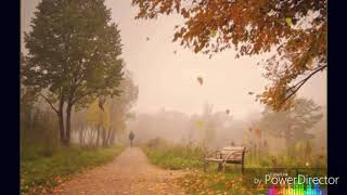Lx24 Осенний туман