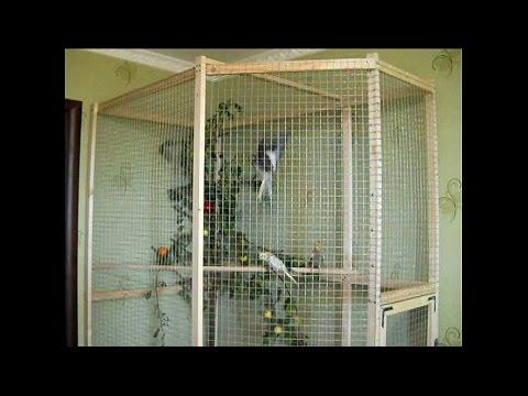 Как сделать вольер для попугая своими руками инструкция