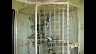 Строим вольер для попугаев - Итоги. Как сделать вольер для птиц