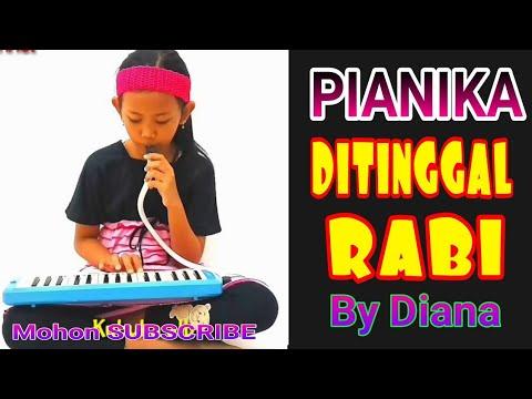 PIANIKA LAGU DITINGGAL RABI | NELLA KHARISMA | Melodica Cover