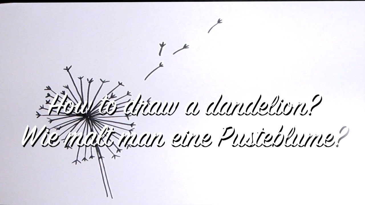 Pusteblume zeichnen lernen - How to draw a dandelion - DIY Anleitung Strich  für Strich