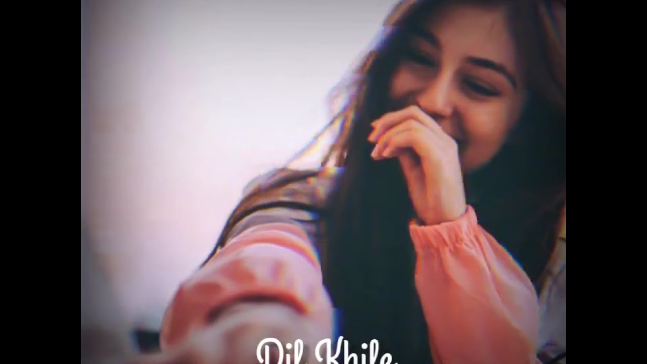 Download Tum Mile Dil Khile Song WhatsApp Status    Tik Tok Trending Song Status    Love WhatsApp Status