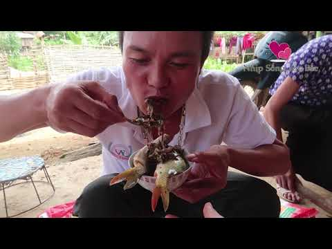 Horror Dishes People Eat Fish Alive (English Sub)| Most Disgusting Food On Earth