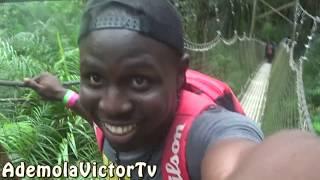 Canopy Walk in African Jungle |  Lekki Conservation Centre Vlog | Lagos, Nigeria