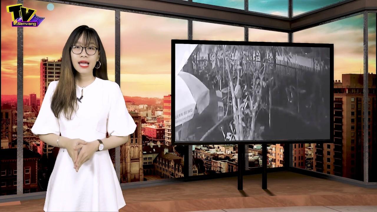 CSGT gây tai nạn trong đêm rồi 'BỎ CHẠY'