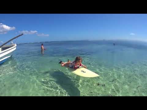tonga surf trip