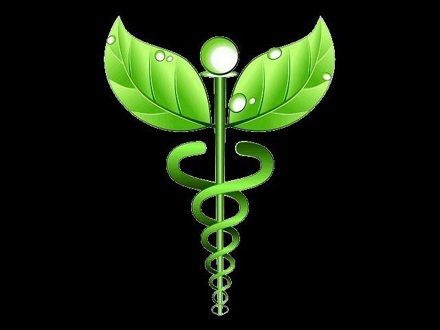 Medicina Integrata Plus - IFCA Firenze
