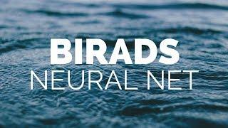 BIRADS NEURAL NET CANCER PREDICTING APP