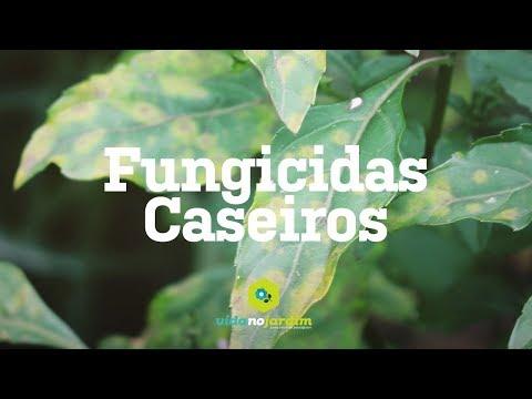Fungicidas caseiros