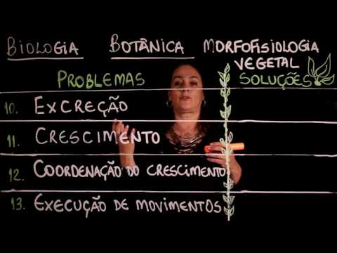 Enem: Aula 85 REINO PLANTAE Botânica Morfofisiologia parte 1 (ProUni)