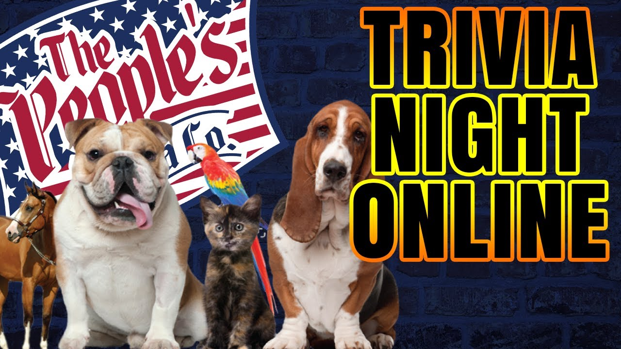 Trivia Night Online | Pet Appreciation Night