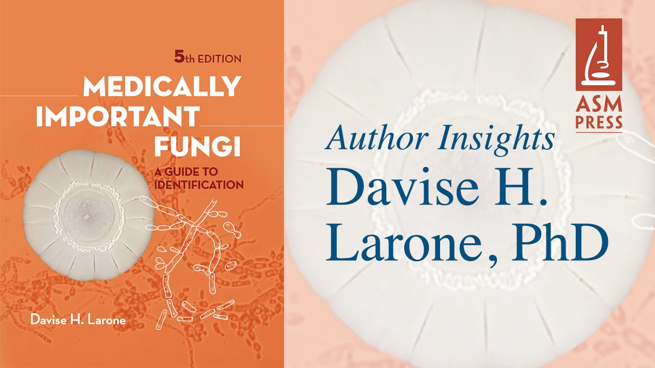 Medically Important Fungi A Guide To Identification With Davise H
