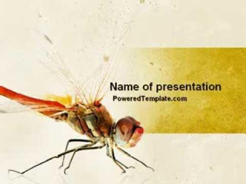 desert powerpoint templates ppt slides images graphics