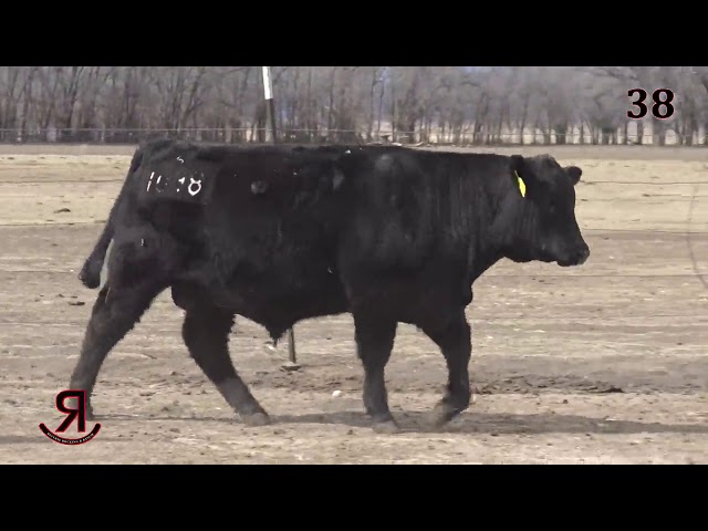 Reverse Rocking R Ranch Lot 38