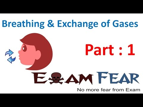 Biology Breathing & Exchange of Gases part 1 (Introduction) CBSE class 11 XI