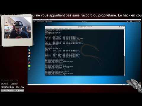 Un hacker en train de hacker : HES2010 (Elaine)