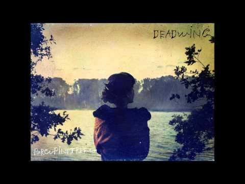 Porcupine Tree - Open Car ( with Lyrics)