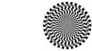 歪同心円錯視.   Distorted Circle Illusion by Hitoshi Arai and Shinobu Arai (2009)