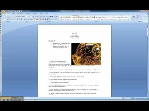 How To Insert Images Into A Word Document.