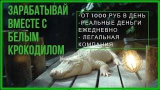 ОТ 1000 тыс рублей в день! Реальных денег!  Партнерка БК