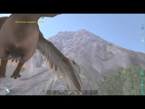 Ark:Taming Argents - Easy and Safe Guide