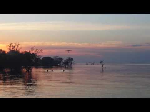 Pouso de flyboat na praia do açutuba manaus amazonas
