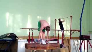 Результат Дмитрия - Гимнастическая подготовка (gymnasticscience.com)