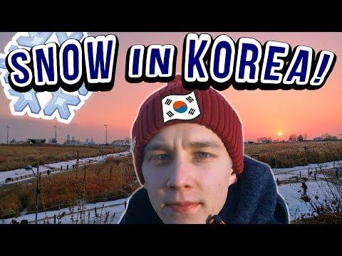 Travel Korea! Seoul trip in Winter, Hiking Sky Park Vlog 북유럽 핀란드 사람의 한국 여행: 서울 하늘공원 등산 (한글 자막) 한국어