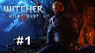 The Witcher 3: Wild Hunt. Встречайте Геральта. [Прохождение] #1