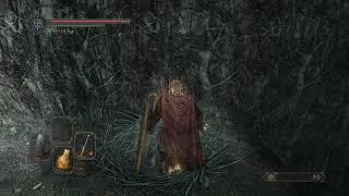 Zagrajmy w Dark Souls 2: Scholar of the First Sin (part 7)