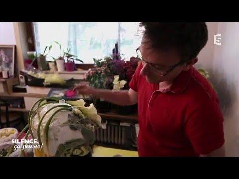 Portrait : le fleuriste belge