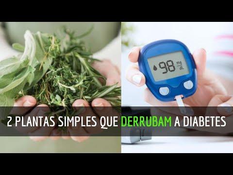 como-tratar-diabetes-naturalmente-|-2-plantas-poderosas