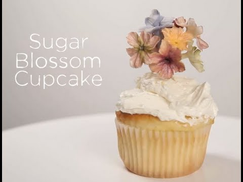 Maggie Austin's Sugar Flower Cupcake Topper   Project Cupcake Craftsy Cake Decorating