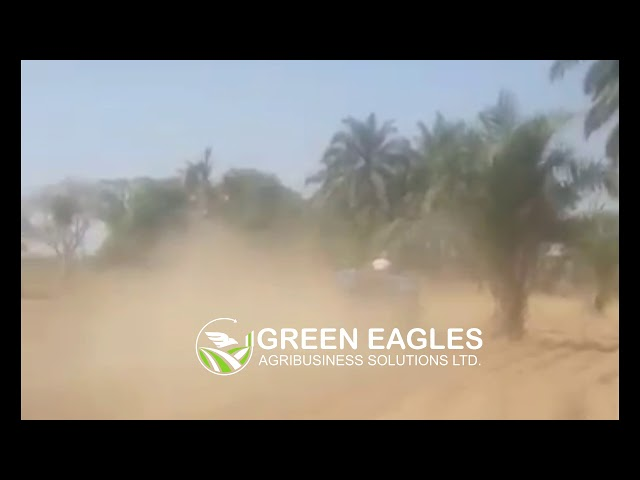 Green Eagles Agribiz Preliminary Land preparation