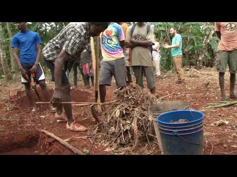 Haiti Agriculture Technique Workshop - Creative Exchanges In